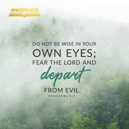 Be not wise in thine own eyes: fear the LORD, and depart from evil. 