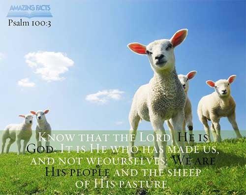 Psalms 100:3