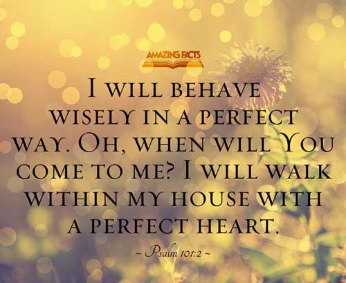 Psalms 101:2