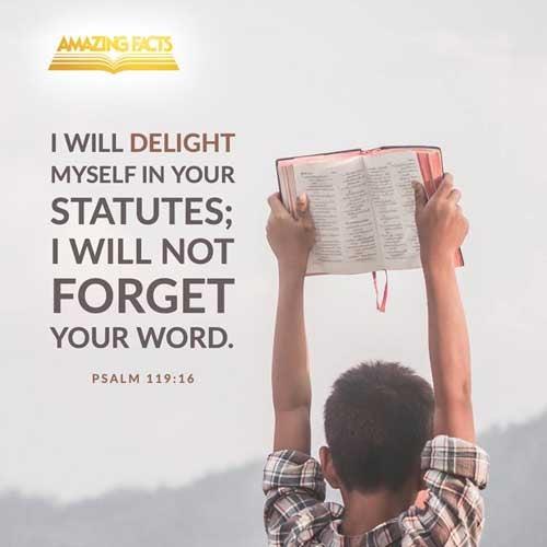 Psalms 119:16