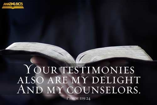 Thy testimonies also are my delight and my counsellors.leth. 