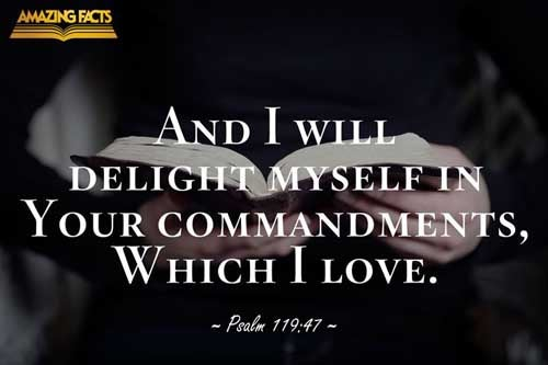 And I will delight myself in thy commandments, which I have loved. 