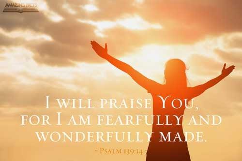 Psalms 139:14