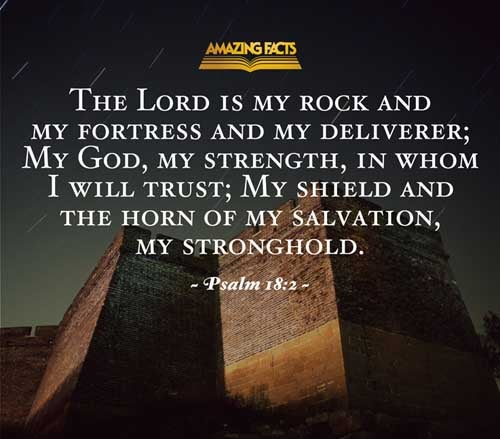 The LORD is my rock, and my fortress, and my deliverer; my God, my strength, in whom I will trust; my buckler, and the horn of my salvation, and my high tower. 