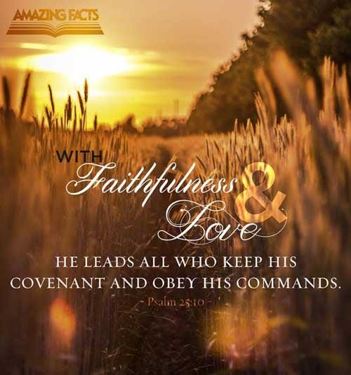 Psalms 25:10