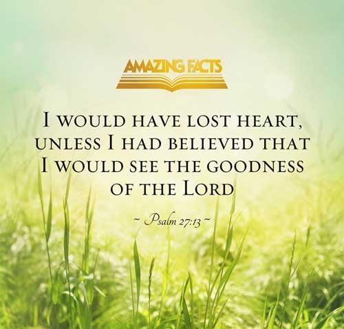 Psalms 27:13