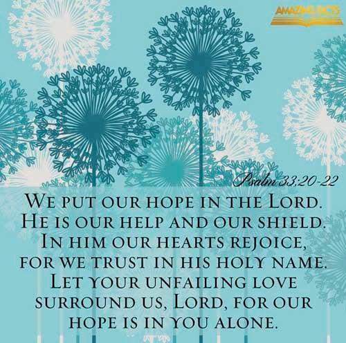 Psalms 33:20-22