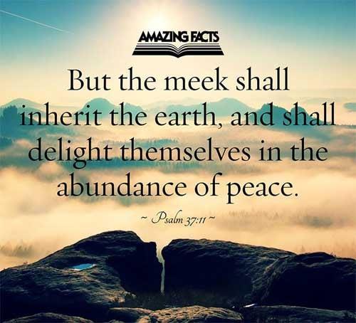 Psalms 37:11