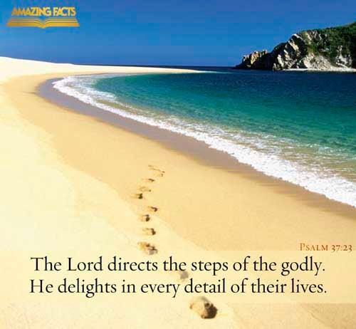 Psalms 37:23