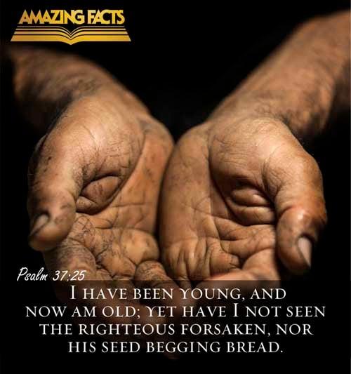 Psalms 37:25