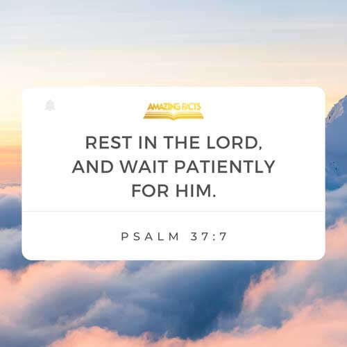 Rest in the LORD, and wait patiently for him: fret not thyself because of him who prospereth in his way, because of the man who bringeth wicked devices to pass. 