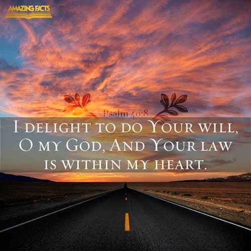 Psalms 40:8