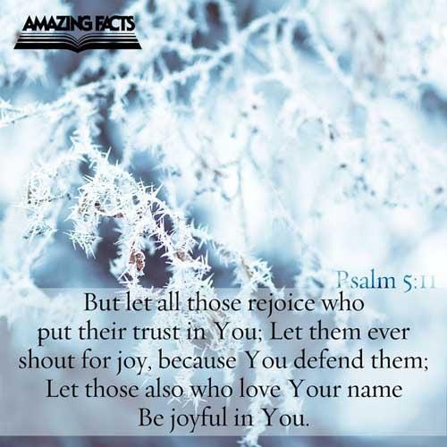 Psalms 5:11