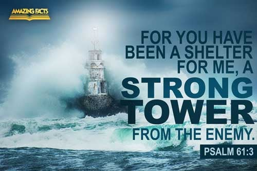 For thou hast been a shelter for me, and a strong tower from the enemy. 