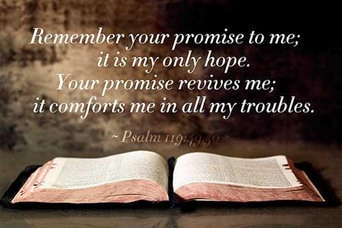 Psalms 119:49-50