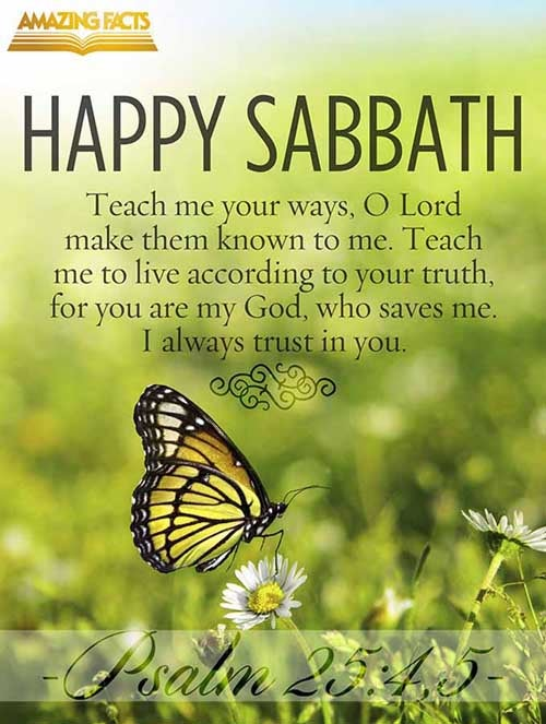 Shew me thy ways, O LORD; teach me thy paths. Lead me in thy truth, and teach me: for thou art the God of my salvation; on thee do I wait all the day. <br />(Psalms 25:4-5)