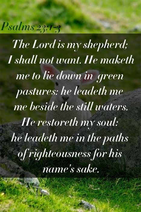 Psalms 23:1-3