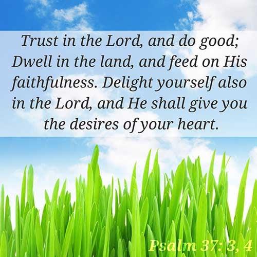 Psalms 37:3-4