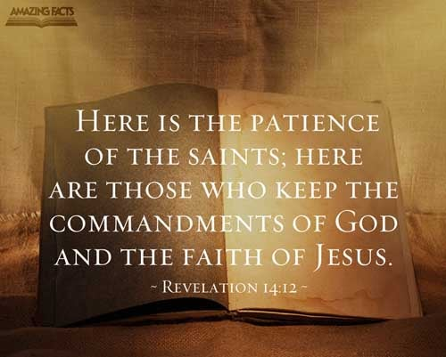 Here is the patience of the saints: here are they that keep the commandments of God, and the faith of Jesus. 