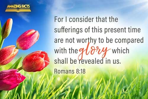 For I reckon that the sufferings of this present time are not worthy to be compared with the glory which shall be revealed in us. 