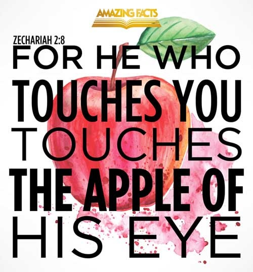 Zechariah 2:8