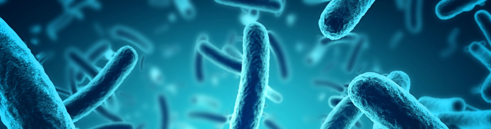 Pestilence and Disease