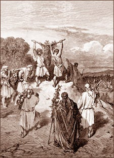 The Israelite spies returning from Canaan ... Numbers 13