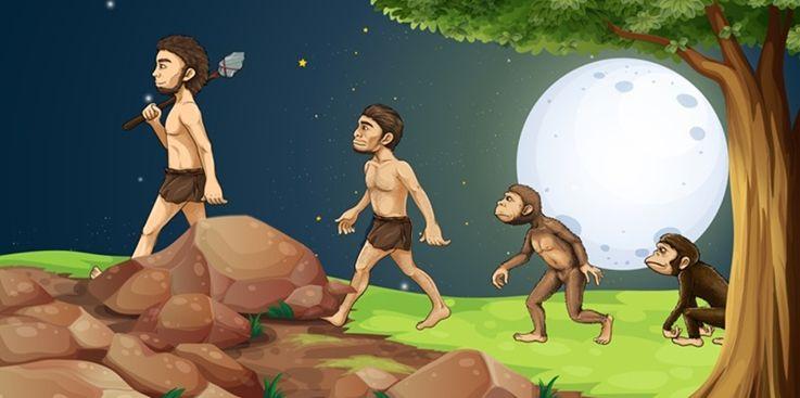 Evolution, Pt. 1