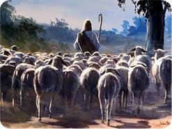16. 他の教会にも忠実なクリスチャンがたくさんおり、神の真の残りの民は1つしかないので、これらの忠実なクリスチャンはどうなりますか?