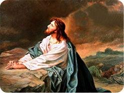 15. わたしたちが什一や献金を盗むとき、イエスはどのようにお感じになるでしょうか?