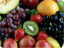 1. 神が人のために計画された最初の食べ物は、何でしたか?