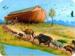 12. 清い動物と汚れた動物に関する法は、十字架で終わったモーセの礼典律の一部ではありませんか?
