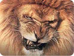 9. 聖書はどんな2つの恐ろしい動物をサタンのたとえに用いていますか?